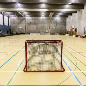 Betsch-art-Unihockey Laupen Damen-2_50p