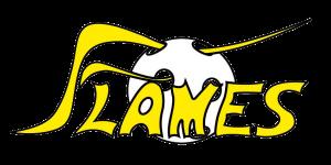 Logo_Flames-0